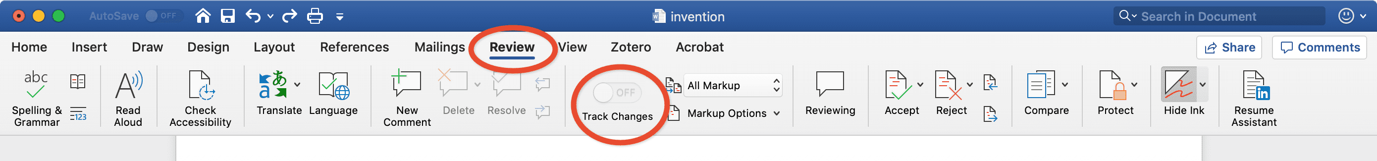 Screenshot of Word's *track changes* toolbar options.